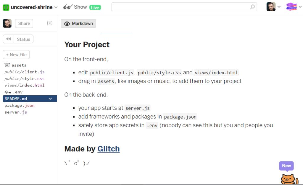 Glitch hosting platform